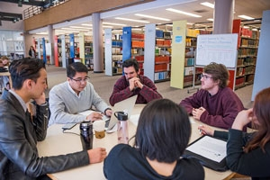 Students in the library studying