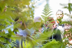 Students behind ferns