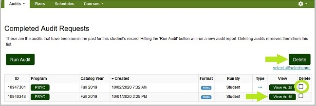 Completed Audit Results. The delete check box is located in the last column.